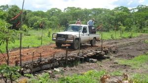 A new bridge and access road into a remote exploration area